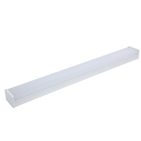 2x20w 4 foot LED Emergency Light